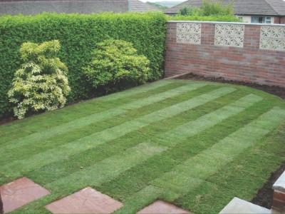 New Lawn in Croydon