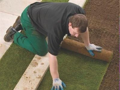 Gardening in Croydon